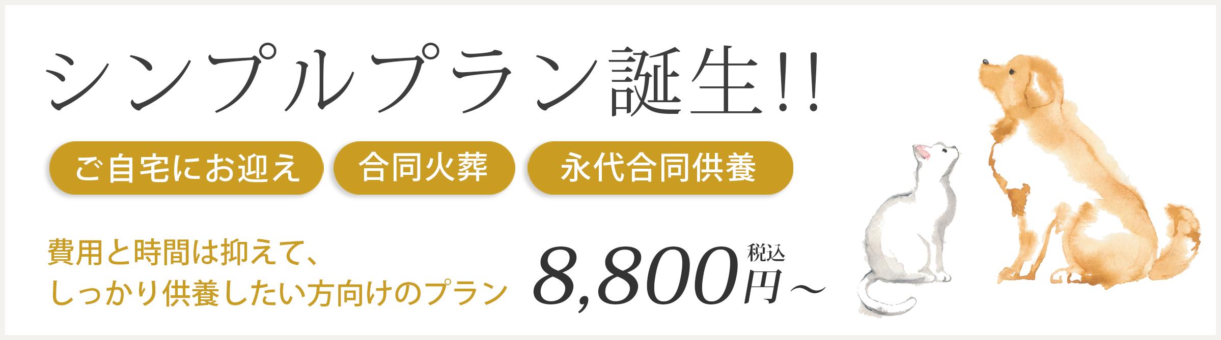シンプルプラン 8,800円
